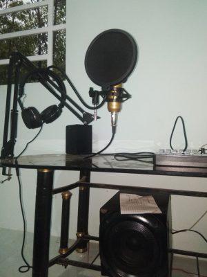 mic thu âm giá rẻ 929