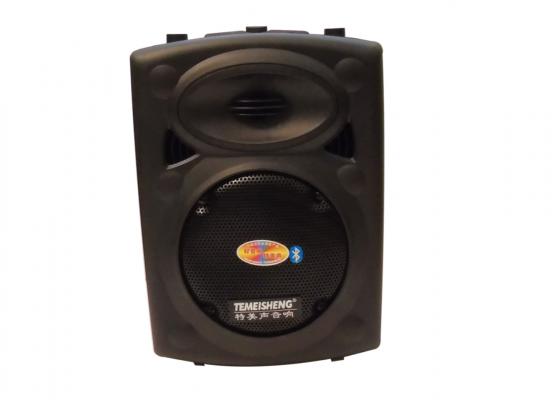 Loa Kéo Karaoke Di Động Temeisheng DP131 1