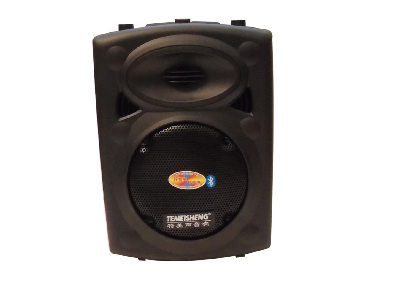 Loa Kéo Karaoke Di Động Temeisheng DP131
