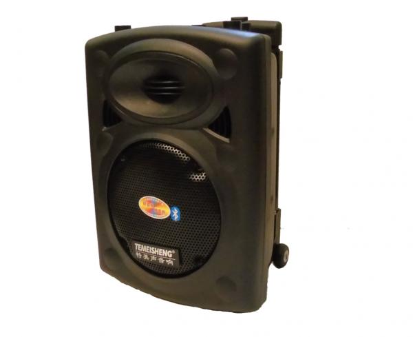 Loa Kéo Karaoke Di Động Temeisheng DP131 3