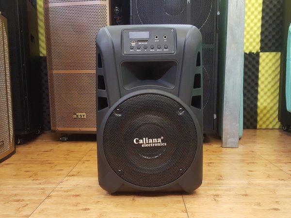 loa kéo karaoke di động Caliana TN10 4