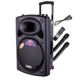 Loa Kéo Karaoke Temeisheng 297L 1