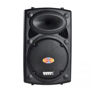Loa Kéo Karaoke Temeisheng 297L 2