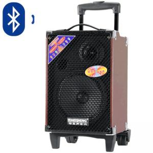 loa kéo karaoke di động q10 3