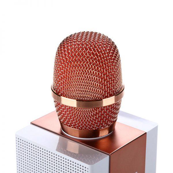 mic karaoke bluetooth giá rẻ 2